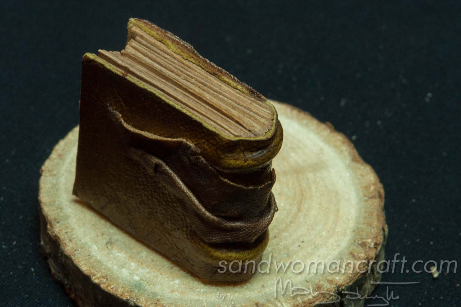 Miniature book with dragon's eye