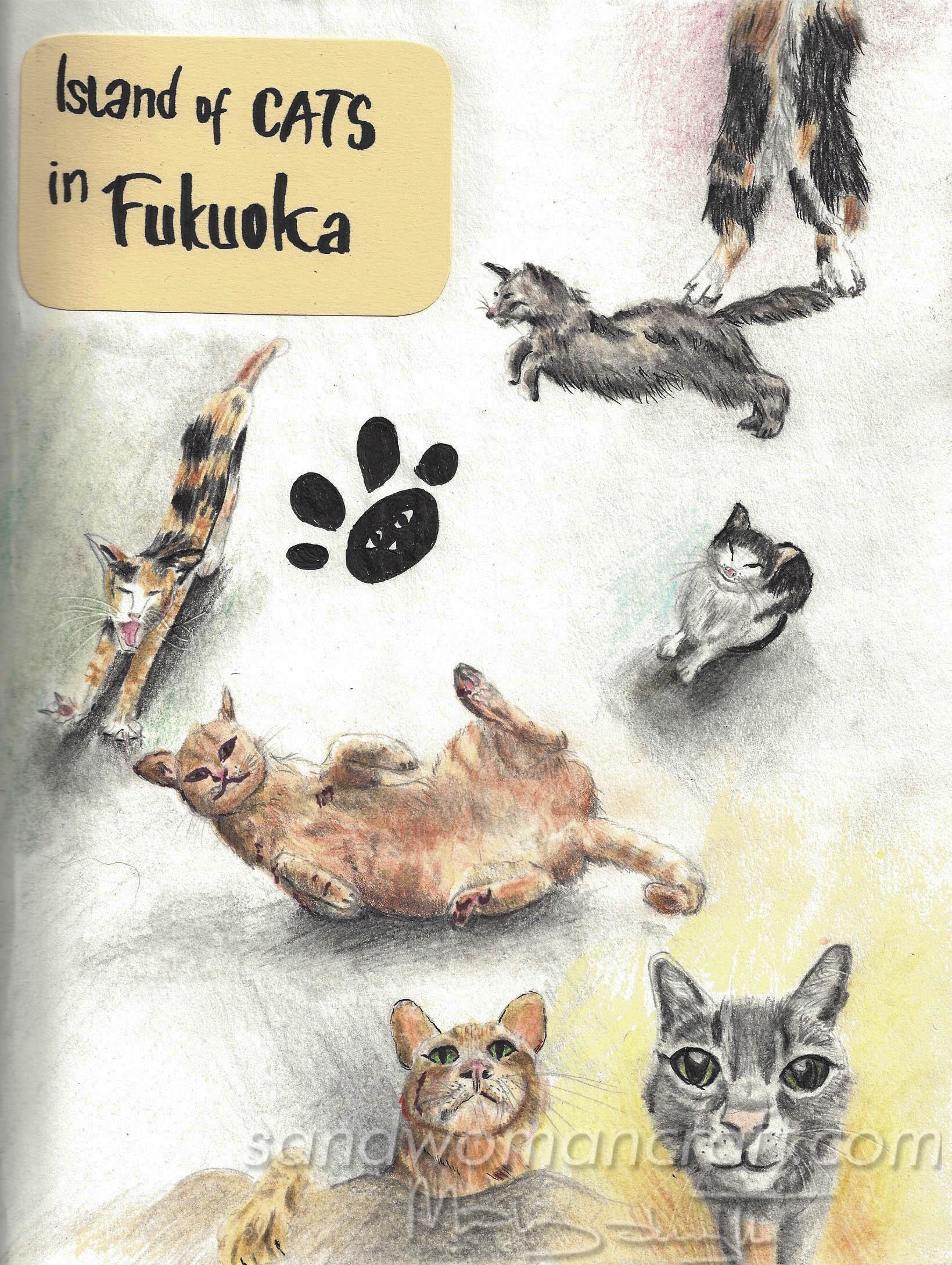 Island of cats in Fukuoka