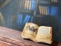 Miniature tiny open book with bat