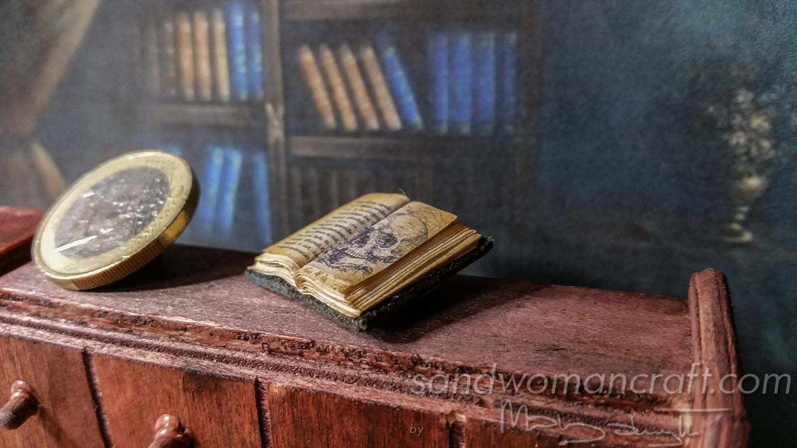 Miniature tiny book with skull.
