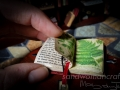 Miniature open herbs book