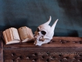 Miniature devil skull. Miniature monster skull